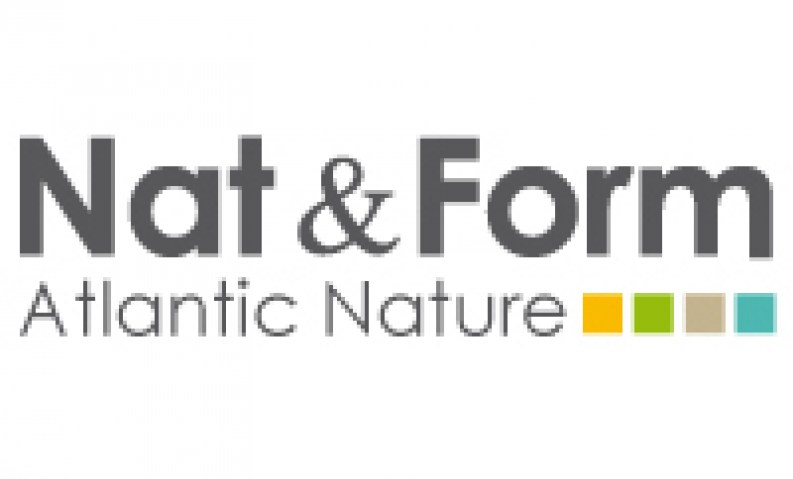 nat-form-logo
